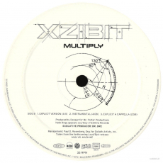 Xzibit - Multiply (12 Single, Vinyl) (gebraucht SCHLECHT)