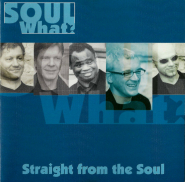 Soul What? - Straight from the Soul (CD, Album) (gebraucht VG+)
