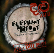 Elephant Foot - Its a Big Beat (CD, Album) (gebraucht VG)