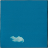 The Plastic Ono Band - Live Peace In Toronto 1969 (LP, Album + Kalendar) (gebraucht VG)