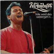 Wolfgang Ambros - Wie wird des weitergehn (LP, Comp.) (gebraucht G+)