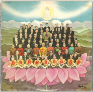 George Harrison - Dark Horse (LP, Album) (gebraucht G)