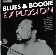 VARIOUS - Blues & Boogie Explosion (CD, Compilation) (gebraucht VG)